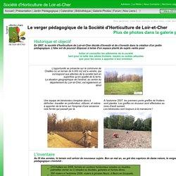 Verger Pédagogique de la Socité d'Horticulteure du 41 à Chailles