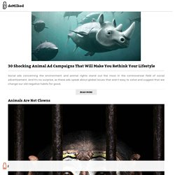 30 Shocking Animal Ad Campaigns That Will Make You Rethink Your Lifestyle