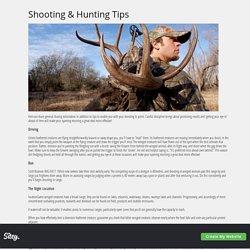 Shooting & Hunting Tips