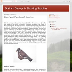 Durham Decoys & Shooting Supplies: Different Types Of Pigeon Decoys To Choose From
