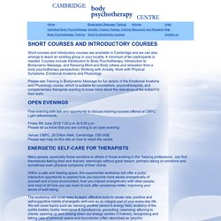 Short and Introductory Courses