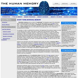 Short-Term Memory and Working Memory - Types of Memory