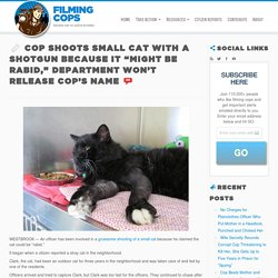 "Cop Shoots Small Cat With a Shotgun Because it ""Might be Rabid,"" Department W..."