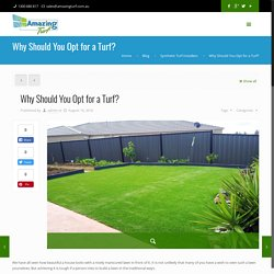Why Should You Opt for a Turf? - Artificial Grass Point Cook