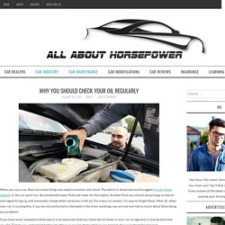 Why You Should Check Your Oil Regularly - All About Horse Power