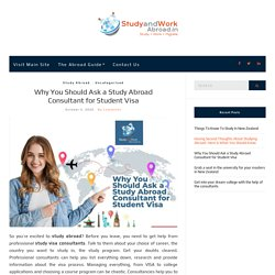 Why You Should Ask a Study Abroad Consultant for Student Visa