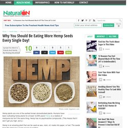 Why You Should Be Eating More Hemp Seeds Every Single Day!