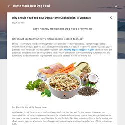 Why Should You Feed Your Dog a Home Cooked Diet?