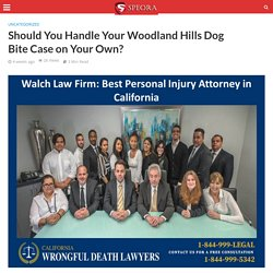 Should You Handle Your Woodland Hills Dog Bite Case on Your Own?