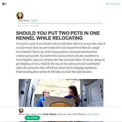 SHOULD YOU PUT TWO PETS IN ONE KENNEL WHILE RELOCATING