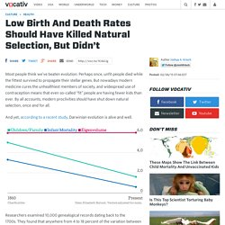 Low Birth And Death Rates Should Have Killed Natural Selection, But Didn't