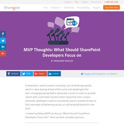 What Should SharePoint Developers Focus on