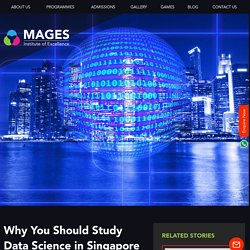 Why You Should Study Data Science in Singapore - Mages