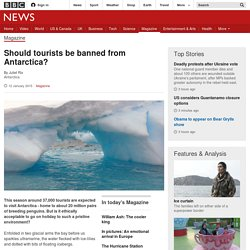 Should tourists be banned from Antarctica?