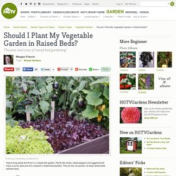 Should I Plant My Vegetable Garden in Raised Beds?