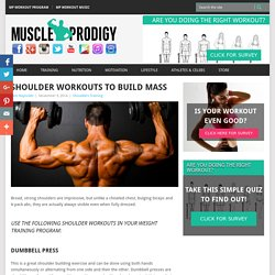 Workout To Build Muscle
