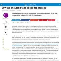Why we shouldn't take seeds for granted - AoBBlog