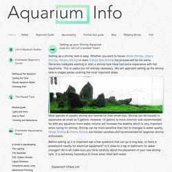 Shrimp Tank Guide