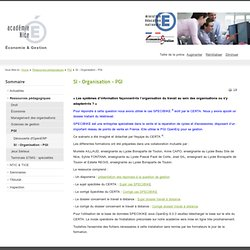 SI - Organisation - PGI