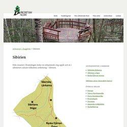 Sibirien · Arboretum Norr