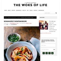 Sichuan Spicy Wontons Recipe