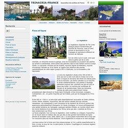 Sicile : Flore et faune