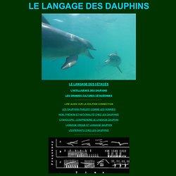 langage des dauphins sifflements clics écholocation signatures sifflées