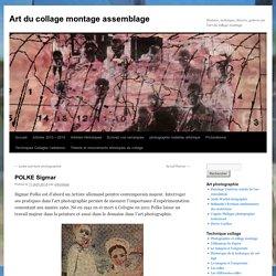 POLKE SigmarArt du collage montage assemblage