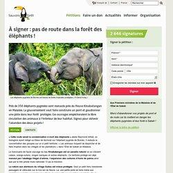 À signer : pas de route dans la forêt des éléphants