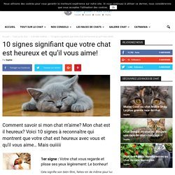 10 signes signifiant que votre chat est heureux