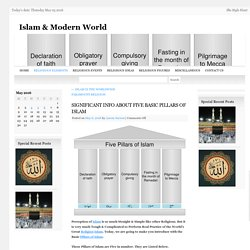 SIGNIFICANT INFO ABOUT FIVE BASIC PILLARS OF ISLAMIslam & Modern World