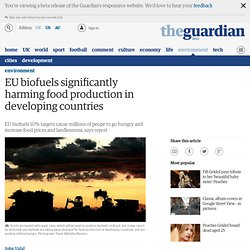 EU biofuels significantly harming food production in developing countries | Environment