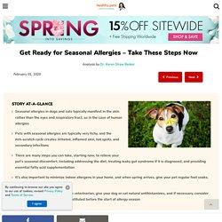 Signs of Seasonal Allergies in Pets