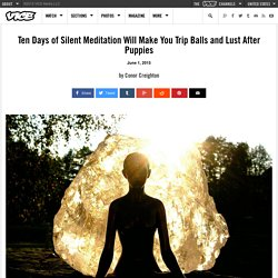 Ten Days of Silent Meditation Will Make You Trip Balls and Lust After Puppies