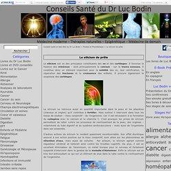 Le silicium de prêle