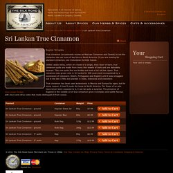 Silk Road Spice Merchant
