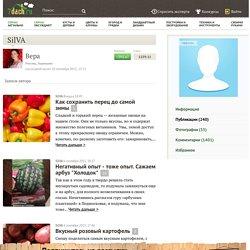 Информация / Профиль SilVA / 7dach.ru
