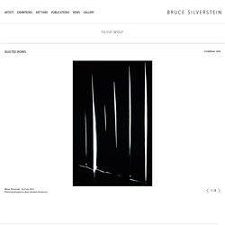 Silvio Wolf - Artists - Bruce Silverstein