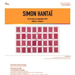 Simon Hantaï - Centre Pompidou, 2013