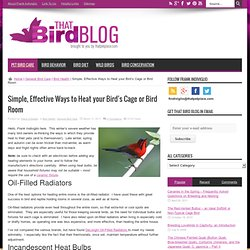 Simple, Effective Ways to Heat your Bird's Cage or Bird Room