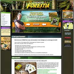 Simulation forestière