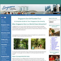 Singapore Zoo Guide - Ticket Price, Opening Hours, Getting There etc