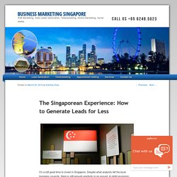 The Singaporean Experience: How to Generate Leads for Less