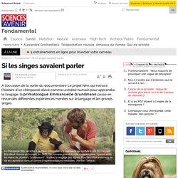 Si les singes savaient parler - 13 janvier 2012
