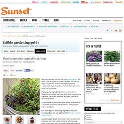 Single container vegetable garden