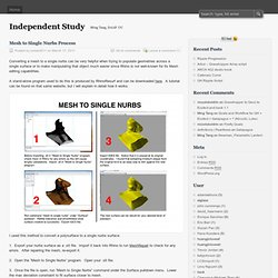 Mesh to Single Nurbs Process | Independent Study