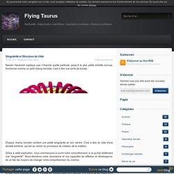 Singularité et Structure du Vide - Flying Taurus