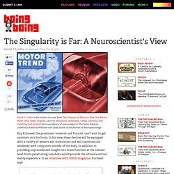 The Singularity is Far: A Neuroscientist's View