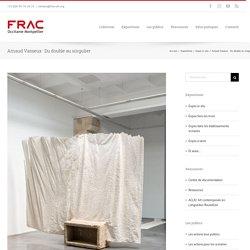 Arnaud Vasseux · Du double au singulier – Frac Occitanie Montpellier