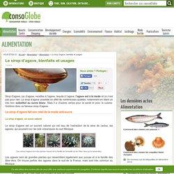 Le sirop d'agave, bienfaits et usages